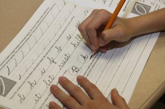 Sign Language essay bid