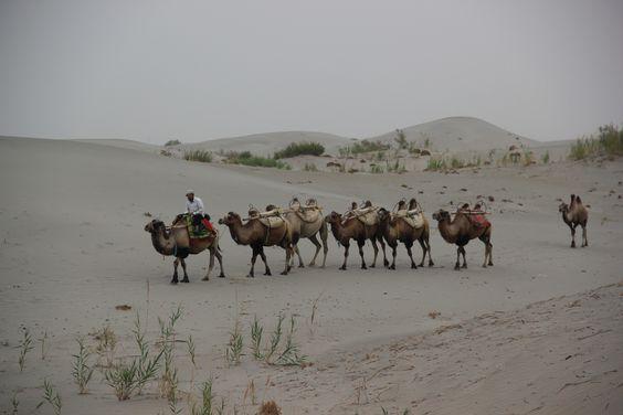 Voyage en Chine de l'Ouest Xinchang