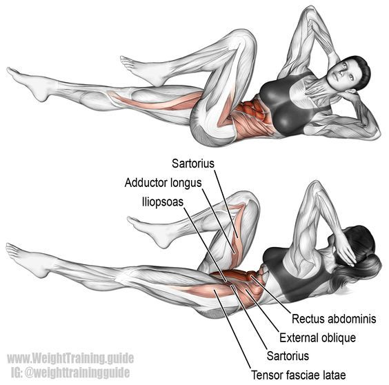 Bicycle Crunch Exercise Instructions And Video Bicycle Crunches