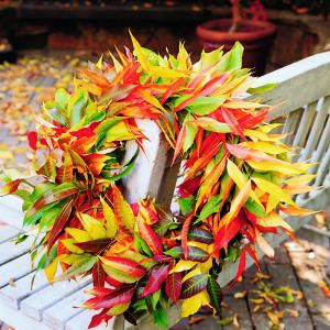 Make a wreath out of the leaves all over the ground!