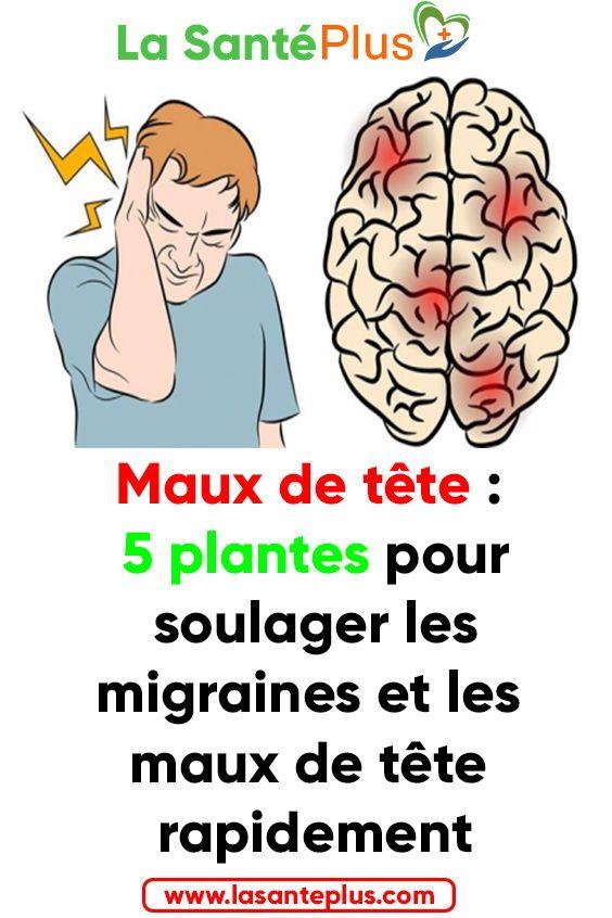 Maux De Tete 5 Plantes Pour Soulager Les Migraines Et Les Maux De Tete Rapidement Migraine Maux Tete Remede Naturel Migraine Memes Ecard Meme