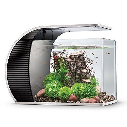 Pin On Aquariums Fish Bowls And Fish Tanks