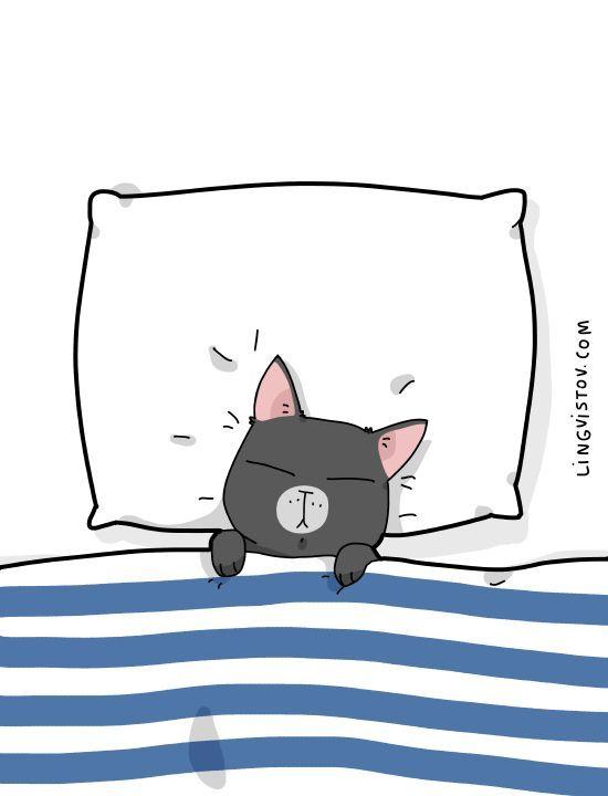 Sleepy Sleepy Cats Illustration Cute Cartoon Drawings Cartoon Cat Drawing