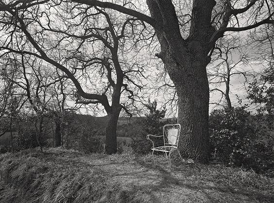 DOMINIQUE BOLLINGER _ La chaise blanche