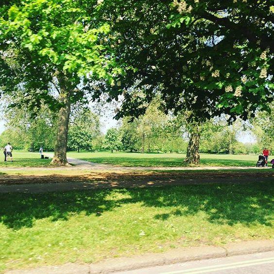 Nature speak for itself!!beautiful, I miss London gardens X @ildivo_official @london #london #gardens #nature
