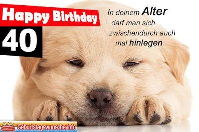 11 Bilder Mit Dem Tag Hunde Alles Liebe Zum Geburtstag