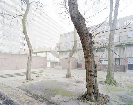 Architectural trees