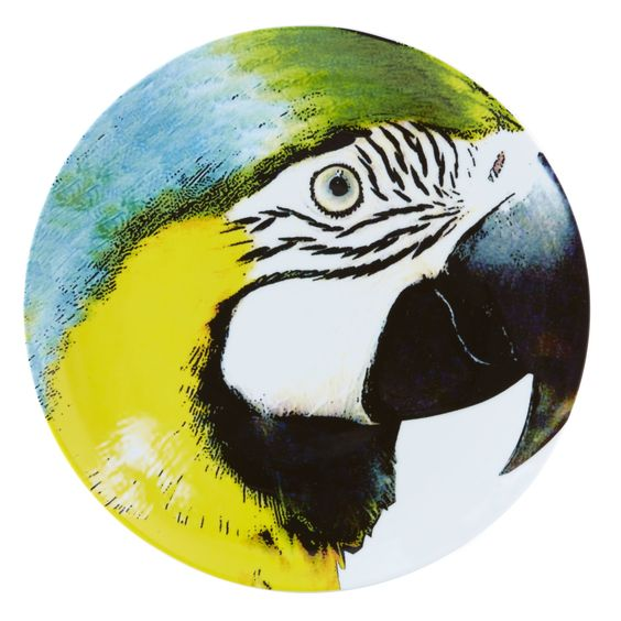 "Olhar O Brasil 12.88"" Bellied Macaw Charger Plate"