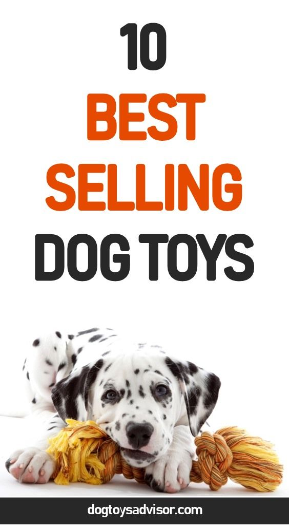 Are You Looking For The Best Dog Toys Here Are The 10 Best