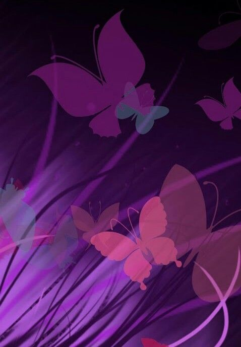 Purple & Pink Butterfly Background | Backgrounds ...