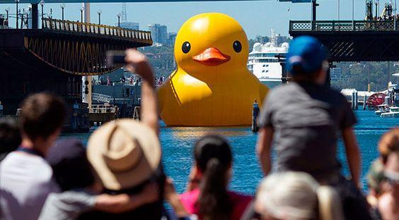 Forentijn Hofman Rubber Duck