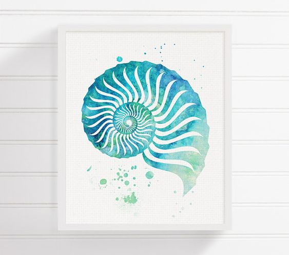 Watercolor Seashell Seashell Art Seashell Print Sea