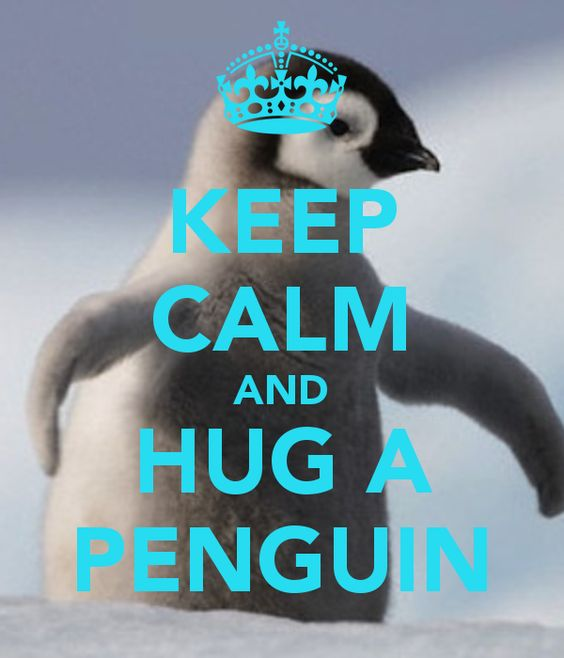 KEEP CALM AND HUG A PENGUIN - KEEP CALM AND CARRY ON Image Generator - brought to you by the Ministry of Information:
