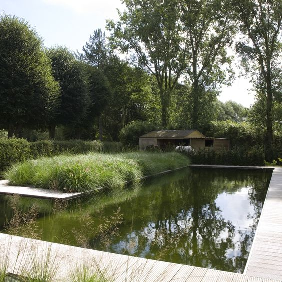 Zwemvijver in l vorm in landelijke tuin met cederhouten for Zwembaden in tuin