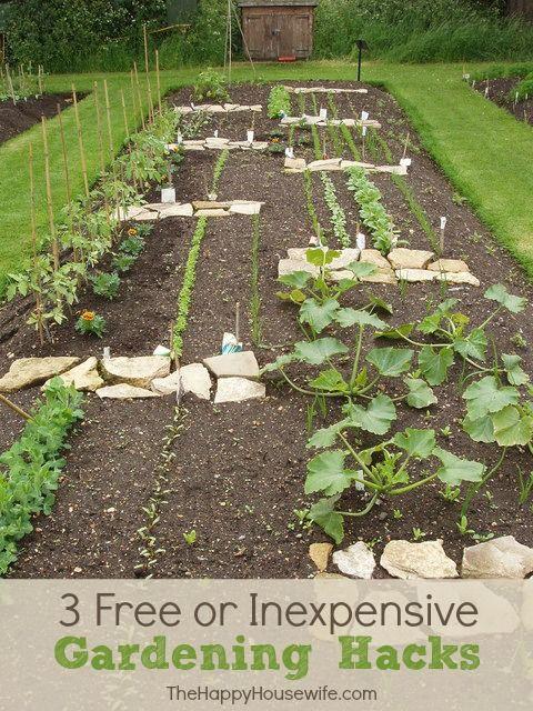 3 free or inexpensive gardening hacks pinterest for Garden design hacks