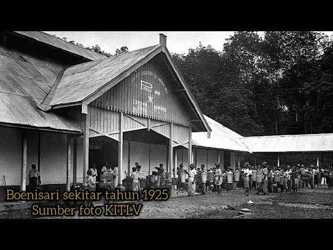 Perkebunan Karet Miramare