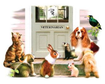 """Cavalier King Charles Spaniel Fabric called """"Visit with the Vet""""  on ONE 18"""" x 22"""" Panel for Quilt or Sew."""