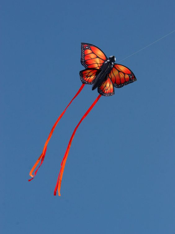 What an amazing kite. I seriously want this...