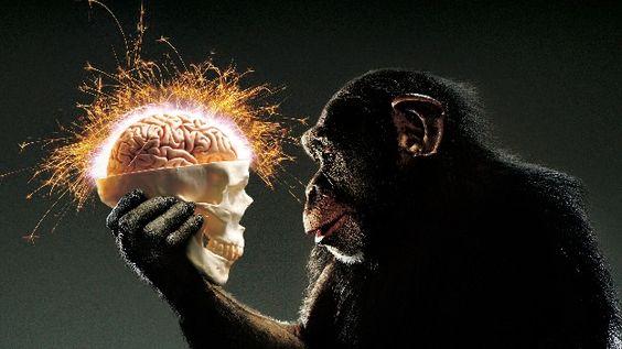En el pasado la evolución del hombre se determinaba por su entorno, hoy, podría deberse a su inteligencia (Luis Delfín).