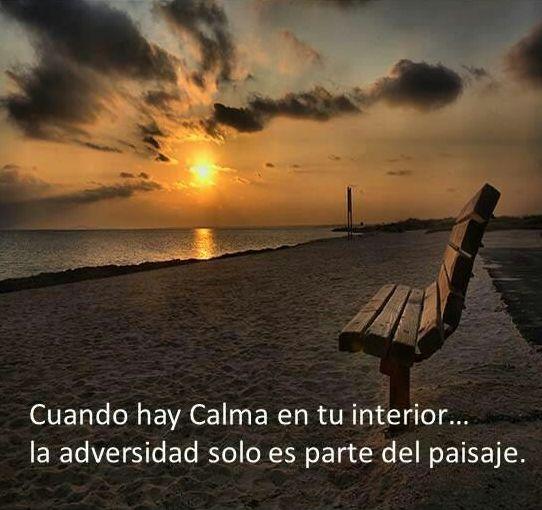 Cuando hay calma en tu interior... La adversidad solo es parte del paisaje. #Citas #Frases @Candidman: