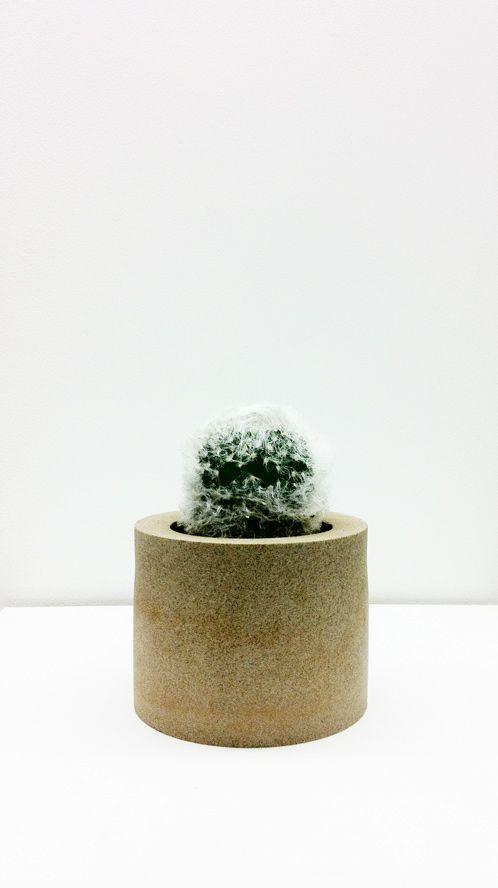 叢 - Qusamura