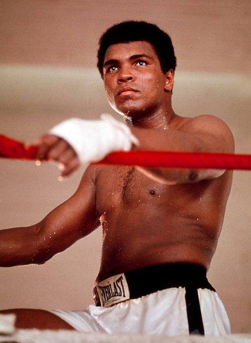 Amazon.com: Customer reviews: Boxing's Best - Muhammad Ali ...