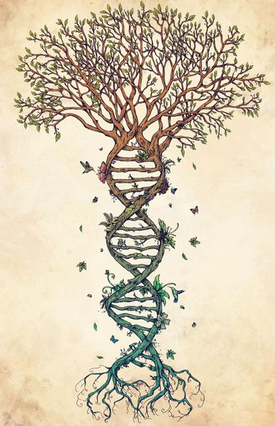 """DNA Helix forms the roots of the Tree of Life. Art for scientists! #biology #STEM #inspiration """"The Fabric of Life (Alternative)"""" by René Campbell"""