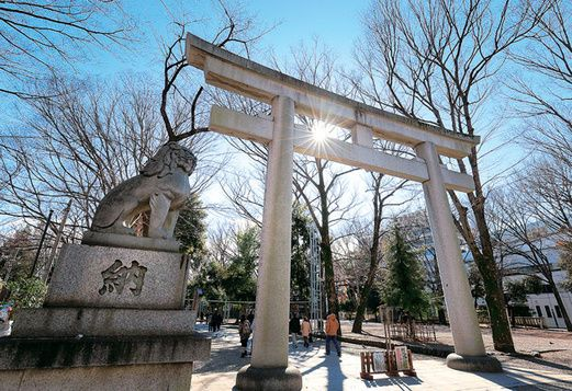 エレ女の開運メソッド2018 占い師 風水師の極私的パワーチャージスポット 大國魂神社 神木 ヒーラー