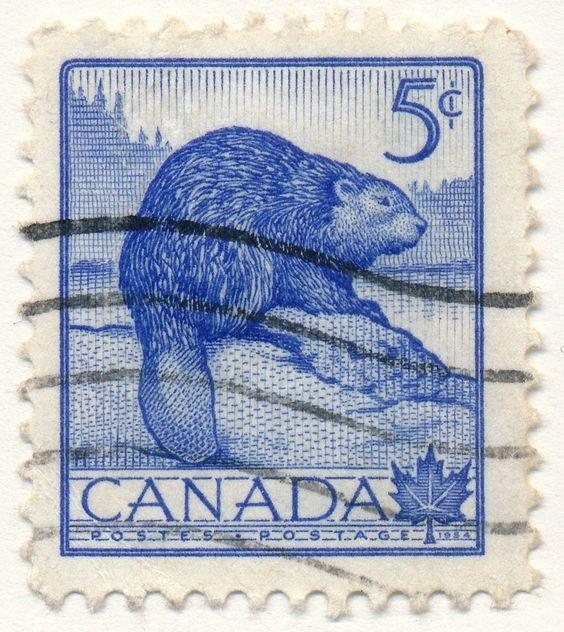 Wildlife Series, Beaver (issued 1954)