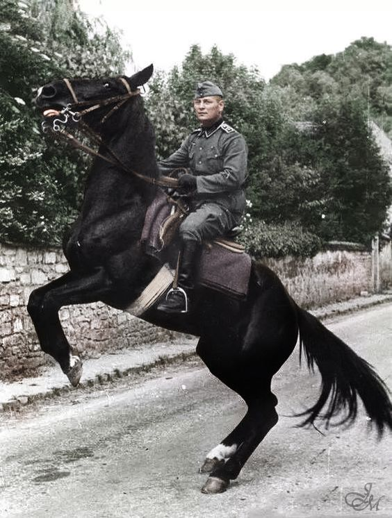 Wehrmacht soldier on a horse.