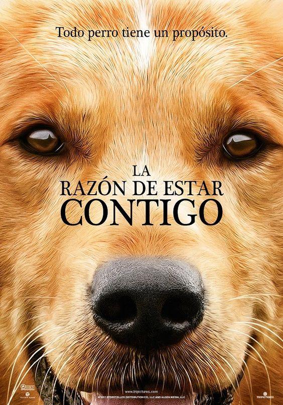 2016 / La razón de estar contigo - A Dog's Purpose