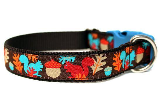 Squirrel Dog Collar 1 Fall Dog Collar by Wagologie on Etsy