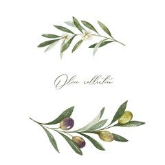 Watercolor Vector Wreath Of Olive Branches And Leaves