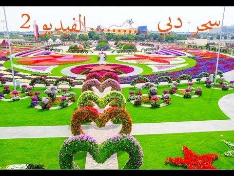 اكبر حديقة زهور في العالم سحر دبي Youtube Miracle Garden Beautiful Gardens Most Beautiful Gardens