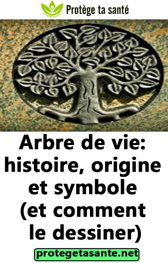 Arbre De Vie Histoire Origine Et Symbole Et Comment Le Dessiner Whiskey Lover Gifts Coffee Lover Gifts For Photographers