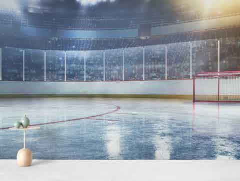 Hockey Arena Ii Wall Mural Hockey Arena Wall Murals Mural