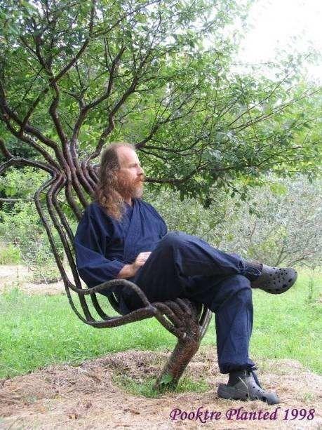 tree chair...wow