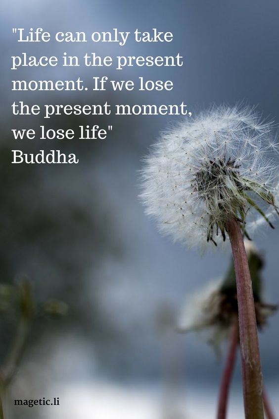 All we ever have is the present moment. Lear to live in the present and you'll feel calm and happy. Read my blog post to discover what is mindfulness and how it can help you.