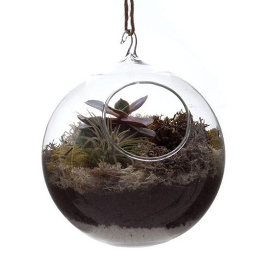 Hanging Terrarium | Urbilis