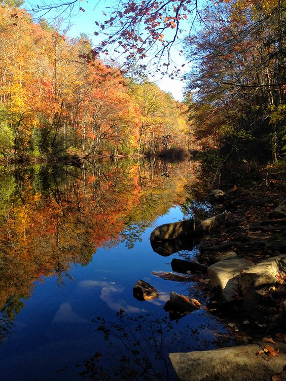Fall reflections in the southern Appalachia of North Carolina