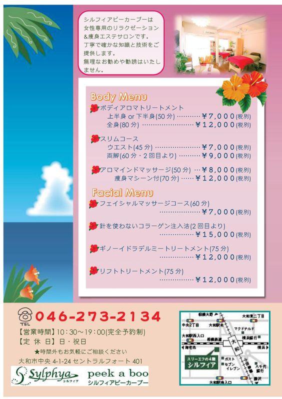 「シルフィアピ-カーブー エステキャンペーンチラシ」【裏面】 A5両面 2014年7月