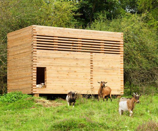 Michael Kühnlein, pygmy goats, Bavaria, goat barn, goat shed, wooden shed, timber shed, spruce, spruce planks, Holzbaupreis Bayern 2014, wooden architecture