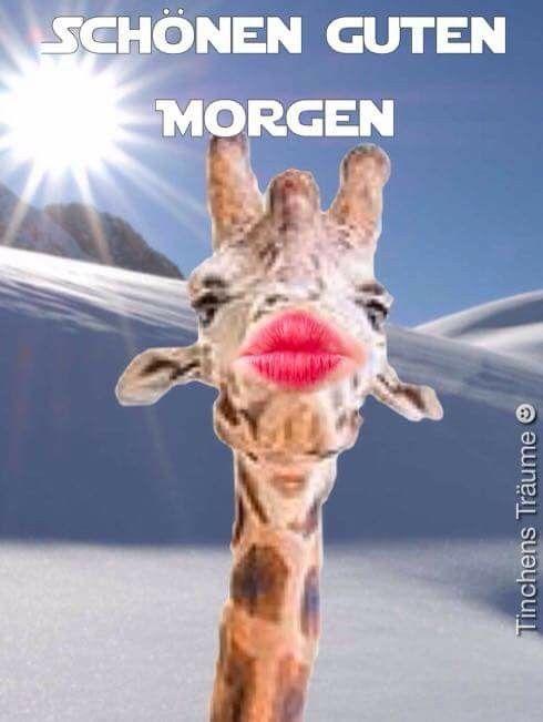 Notitle Marion Hinz Guten Morgen Montag Montag Spruche Montag