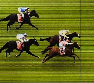Melbourne Cup Betting 2012  http://www.bettingspace.com.au/bookmaker-reviews/betfair