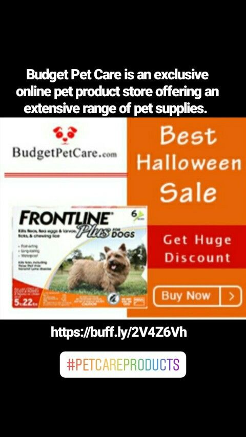 Budget Pet Care Is An Exclusive Online Pet Product Store Offering An Extensive Range Of Pet Supplies With Images Pet Supplies Pet Care Pets