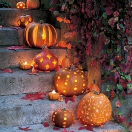 pumpkin-steps.jpg 500×499 pixeles: