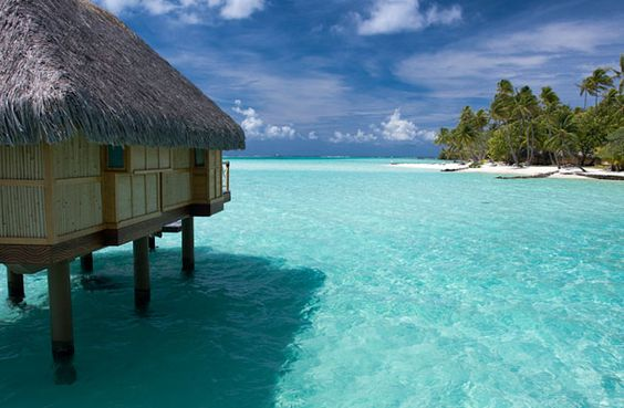 One day, I will live in a house on stilts in the ocean. One day.