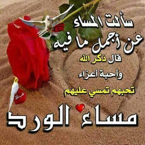 Pin By Doaa Nasser On Good Night تصبحون على خير Meat Food Beef