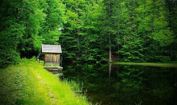 Warum lohnt es sich Wellness im Bayerischen Wald zu erleben? Nicht nur der namensgebende auch Bayerwald genannte Wald, sondern auch kleine Bergseen ...
