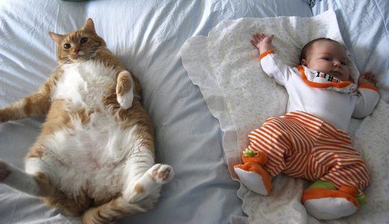 peaceful babies